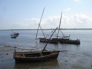 Werkloze dhows van Lamu wp